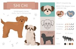 Designer dogs, crossbreed, hybrid mix pooches collection isolated on white. Flat style clipart infographic. Vector illustration royalty free illustration