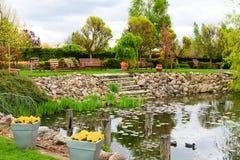 Designer garden. Designer green garden in spring royalty free stock images