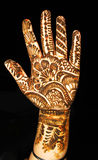 Designer Hand Stock Images