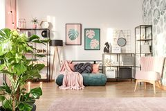 Designer interior with emerald settee. Big monstera plant in a designer living room interior with an emerald green cozy settee and pink elements royalty free stock image