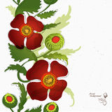 Designer paper with poppy band part Royalty Free Stock Images