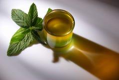 Designer shot. Fancy designer shot served with fresh mint leaves Royalty Free Stock Image