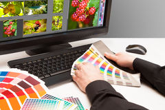 Designer at work. Color samples. Stock Image