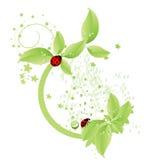 designgreen Royaltyfria Bilder