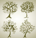 Designs with decorative tree from leafs Stock Photos