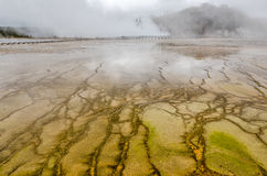 Designs and Reflections at Midway Geyser Basin Stock Images
