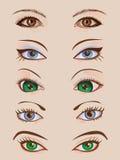 Designuppsättning av fem par av kvinnliga ögon Royaltyfri Bild