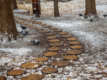 Designweg im Park im Fall von den runden Sägeschnitten eines Baums, das gefallene-unten Laub Lizenzfreie Stockfotografie