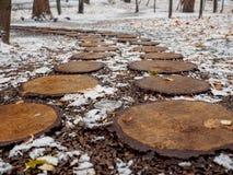 Designweg im Park im Fall von den runden Sägeschnitten eines Baums, das gefallene-unten Laub Stockfotos