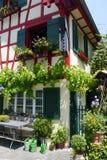 Desing καλοκαίρι άνοιξη κήπων λουλουδιών Στοκ εικόνα με δικαίωμα ελεύθερης χρήσης