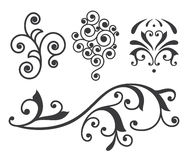 Desing element. Isolated vector scroll floral design element Stock Images