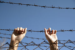 Desire for freedom. Hands reach toward freedom through the barbed wire stock images