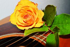 Desire, symbol. A rose on the strings of a guitar, evoking melancholy song and desire stock image