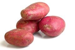 Desiree-Kartoffel stockfoto