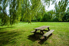 Desk and bench in the park Stock Image