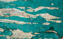Desk with bits and pieces of old paint. Surface of desk with bits and pieces of old chappy green paint. Texture Royalty Free Stock Photography