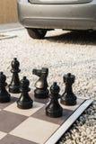 Deska szachy w ogródzie. zdjęcia stock