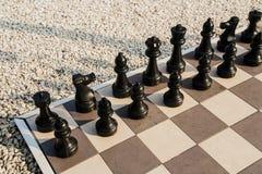 Deska szachy w ogródzie. Obrazy Stock