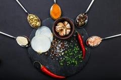 Deska z cebulą, czosnek i pieprz wokoło której łyżki z pikantność Odgórny widok na czarnym tle obraz stock
