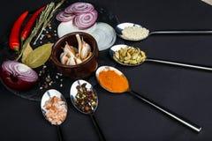 Deska z cebulą, czosnek, podpalany liść, pieprz i sól obok którego kłamamy łyżki z różnorodnymi pikantność fotografia stock