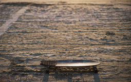 Deskorolka lub longboard wtykaliśmy w piasku w pustyni przy zmierzchem Obraz Royalty Free
