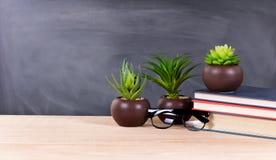 Desktop dello studente con le piante verdi ed i libri con blackboar in bianco Fotografie Stock