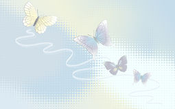 Desktop wallpaper. The Background with butterflies Stock Photography