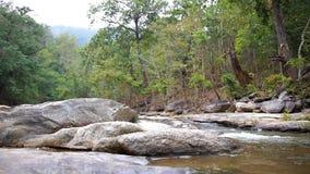 Deslice la escena de una cascada con las rocas y de un bosque verde en un fondo metrajes