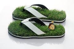 Deslizador Flip Flop con la hierba verde y la mariposa Fotos de archivo libres de regalías