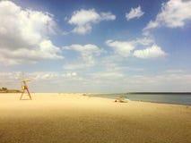 Deslizadores da praia da árvore foto de stock royalty free
