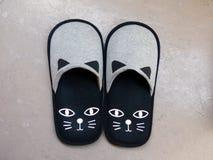 Deslizadores do gato Foto de Stock Royalty Free