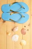 Deslizadores y cáscaras de la playa en la madera Imágenes de archivo libres de regalías