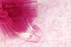 Deslizadores y tutú rosados del ballet Imagenes de archivo