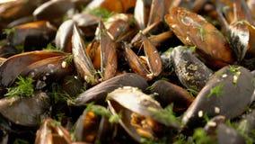 Deslizamento sobre os mexilhões do mar cozinhados com ervas vídeos de arquivo