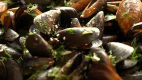 Deslizamento sobre os mexilhões do mar cozinhados com ervas video estoque
