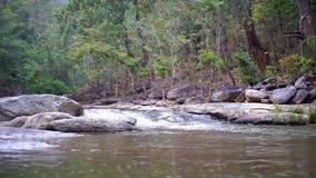 Deslize a cena de uma cachoeira com rochas e de uma floresta verde em um fundo filme