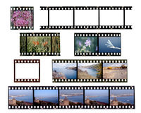 Deslize frames de película Fotografia de Stock