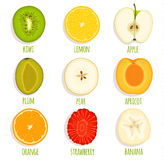 Deslize o fruto do círculo Grupo de fruto cortado vetor Fotografia de Stock Royalty Free