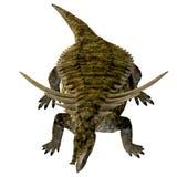 Desmatosuchus på vit stock illustrationer