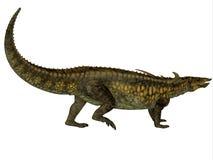 Desmatosuchus profil vektor illustrationer