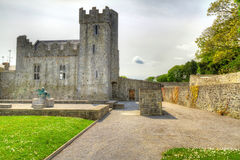 Desmond Castle in Newcastle West. Co. Limerick, Ireland Royalty Free Stock Images