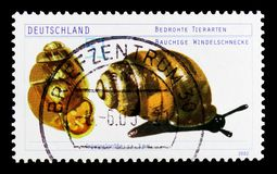 Desmoulin`s Whorl Snail Vertigo moulinsiana, Endangered Animals serie, circa 2002. MOSCOW, RUSSIA - OCTOBER 21, 2017: A stamp printed in German Federal Republic Royalty Free Stock Image