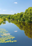 Desna river, Moskow region, Russia Royalty Free Stock Photography