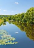 Desna rzeka, Moskow region, Rosja Fotografia Royalty Free