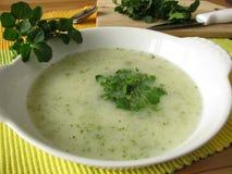 Desnate a sopa com watercress Foto de Stock