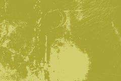 Desolación de la hierba verde Imagen de archivo