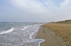 A Deserted Beach Stock Photography