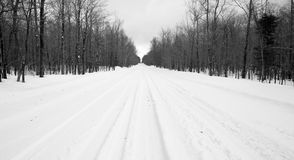 Desolate Country Backwoods Road Covered in Fresh Snow Stock Photography