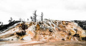 Desolate hill. With Yellowstone national park Stock Photo