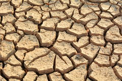 Desolate land or dry areas, no hopes and despair Royalty Free Stock Photos